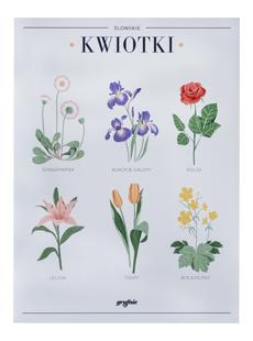 Plakat Kwiotki