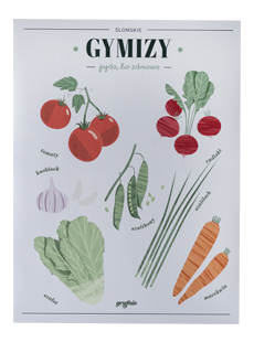 Plakat Gymizy