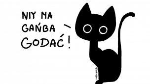 Kot Rojber – wywiad